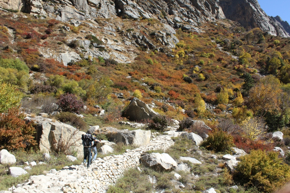 The ancient route! Trekking towards Bhojbasa