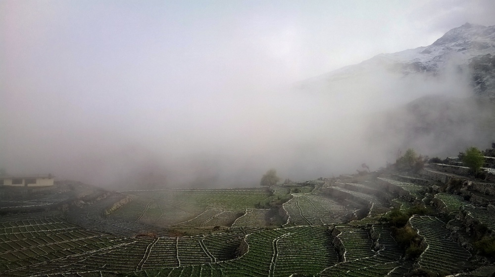 The white cloak of nature! Mist covering a Nako morning